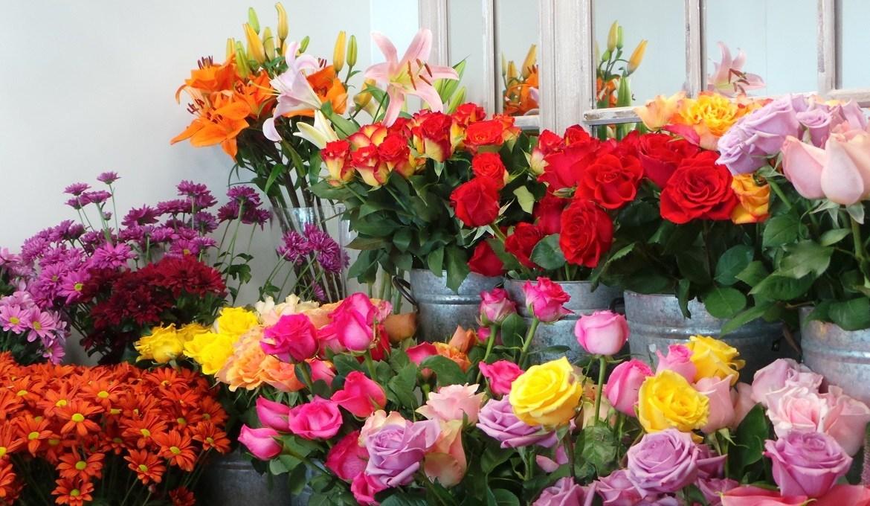hoa tươi có giá cao