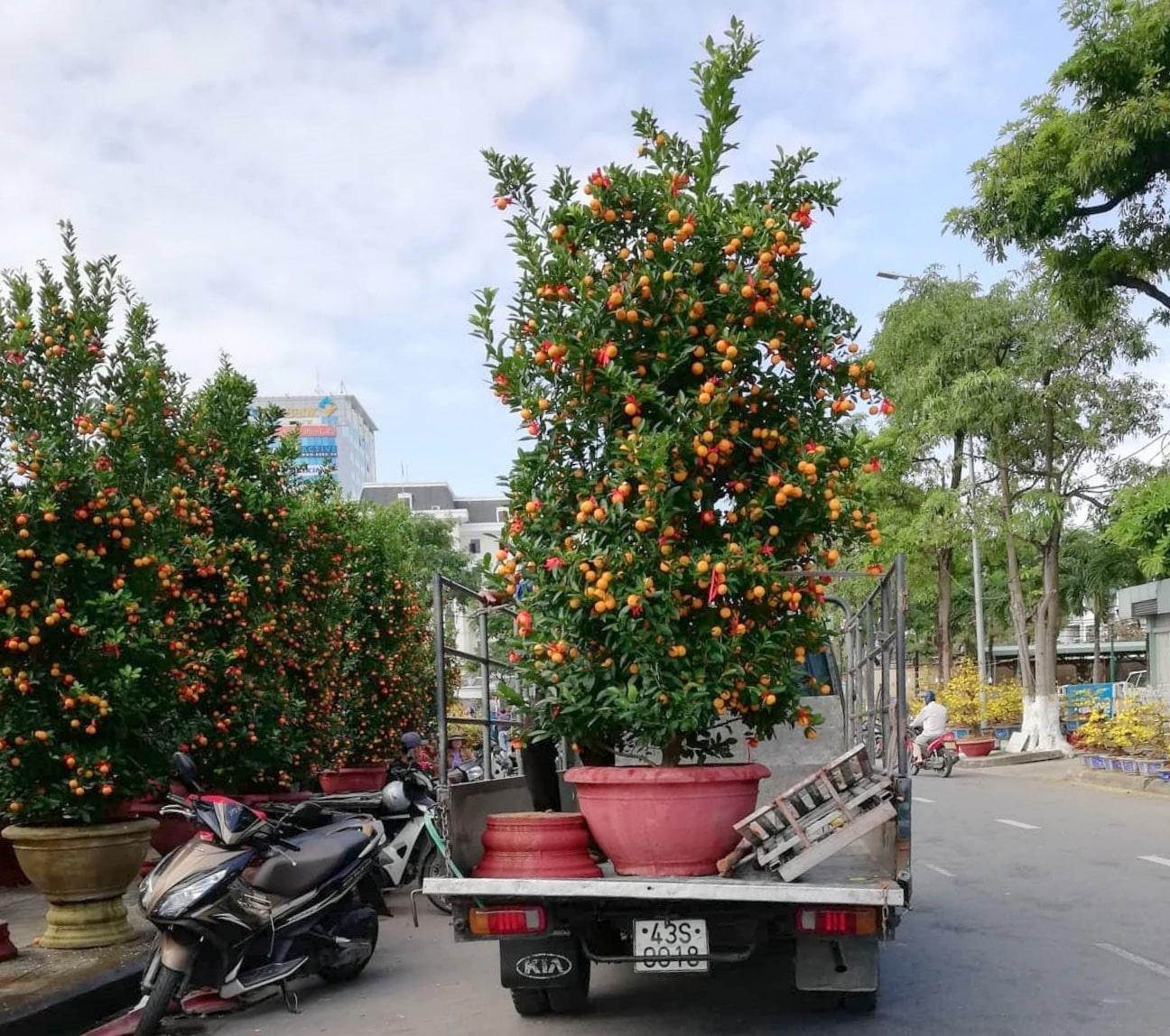 xe tải chở hoa