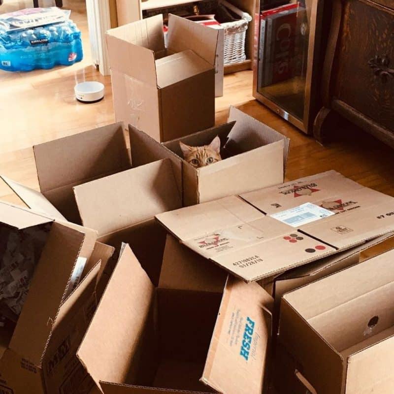 bán thùng carton chuyển nhà huyện Bình Chánh giá rẻ