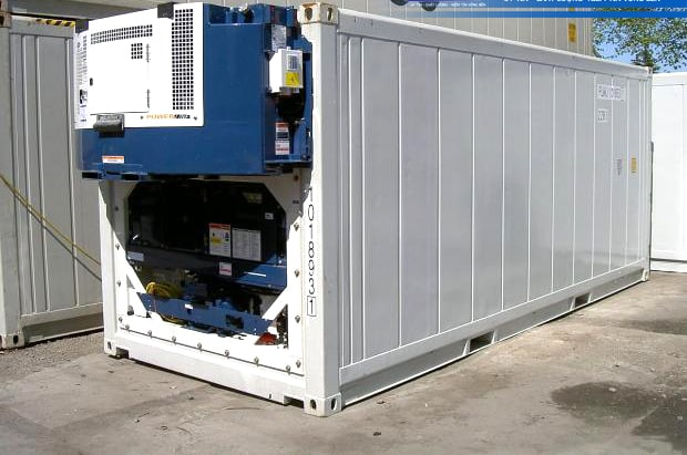Container 20 feet lạnh